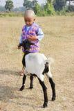 Il bambino sta giocando con una capra Immagine Stock