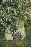 Il bambino sta innaffiando i fiori nel canestro 8338 Immagine Stock