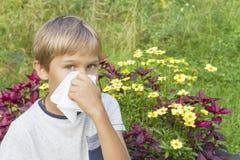 Il bambino sta soffiando il suo naso Fiori e prato verde dietro lui Sanità, medicina, concetto di allergia Fotografia Stock