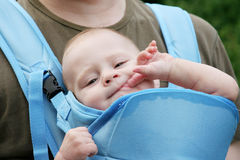 Il bambino succhia una barretta Fotografia Stock Libera da Diritti