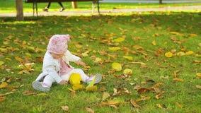 Il bambino sveglio si siede su erba verde in parco e sul gioco con le foglie gialle in autunno video d archivio