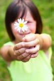 Il bambino tiene un fiore Fotografia Stock