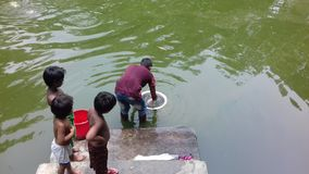 Il bambino tre guarda il pesce, come giocare il pesce in uno stagno fotografie stock