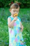 Il bambino un fiore sentente l'odore Immagini Stock