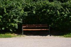 Il banco circondato dalle foglie Fotografia Stock Libera da Diritti