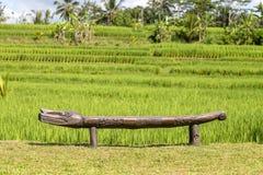 Il banco decorativo di legno è accanto ai terrazzi verdi del riso Bali, Ubud, Indonesia Immagini Stock Libere da Diritti