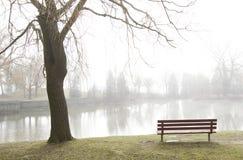 Il banco di sosta trascura il lago nebbioso Immagine Stock