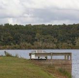 Il banco II del lago Immagini Stock