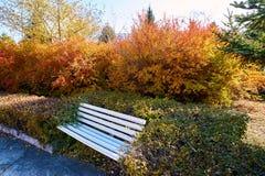 Il banco nel parco di autunno Fotografia Stock Libera da Diritti