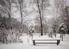 Il banco nel parco di inverno Fotografia Stock
