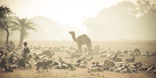 Il Banjara indiano fotografia stock libera da diritti