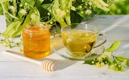 Il barattolo del miele del tiglio, del cappuccio del tè del tiglio e del ramo con il tiglio fiorisce un giorno soleggiato Fotografia Stock