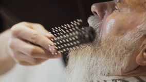 Il barbiere asciugacapelli e pettina la barba dell'uomo maturo stock footage