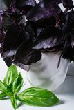 Il basilico verde va su fondo del muro di mattoni bianco, alimento di erbe sano fresco sul tavolo da cucina, derisione dello spaz fotografia stock