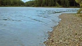 Il battito delle onde contro la riva del fiume archivi video