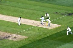 Il battitore inglese guida una palla in MCG Immagine Stock Libera da Diritti