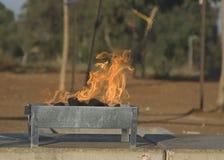 Il BBQ cuoce il barbecue alla griglia della fiamma Fotografia Stock