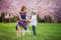Il bei bambino e mamma in primavera parcheggiano, fioriscono e presentano madre Fotografia Stock Libera da Diritti