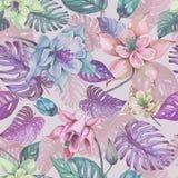 Il bello aquilegia o colombina fiorisce e il monstera esotico va su fondo rosa Pittura dell'acquerello illustrazione vettoriale