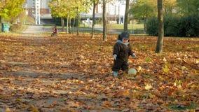 Il bello bambino sta giocando nel parco di autunno con sua madre circa le foglie cadute Giochi da bambini con un pallone da calci video d archivio