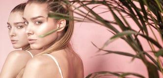 Il bello caucasian gemella i modelli femminili su fondo rosa Fotografia Stock Libera da Diritti