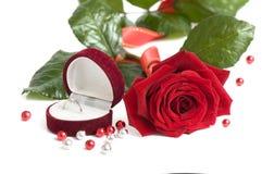 Il bello colore rosso è aumentato per il biglietto di S. Valentino di giorno come regalo Fotografia Stock Libera da Diritti