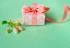 Il bello contenitore di regalo avvolto con la mela della molla sboccia Fotografia Stock Libera da Diritti
