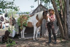 Il bello cowboy asiatico della ragazza prende la cura del suo cavallo con cura di amore fotografie stock