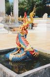 Il bello dei Nagas Fotografia Stock