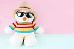 Il bello e orsacchiotto sveglio sta portando un maglione e un cappello Immagine Stock Libera da Diritti