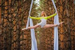 Il bello ed artista di trapezio grazioso si esercita su seta aerea Immagini Stock