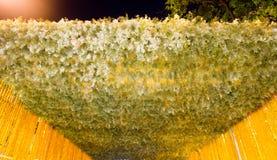 Il bello fiore incurva in fiore del ` per attività del ` del padre per essere informato di re Bhumibol Adulyadej della Sua Maestà Immagini Stock Libere da Diritti