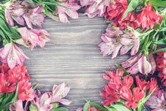 Il bello fondo di Alstroemeria rosso e rosa fiorisce su fondo di legno Vetro tinto Copi lo spazio Immagini Stock Libere da Diritti