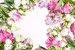 Il bello fondo di Alstroemeria rosso e rosa fiorisce su fondo di legno Vetro tinto Copi lo spazio Isolato Fotografia Stock Libera da Diritti