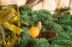 Il bello fondo di Natale con le pigne, i giocattoli di Natale, il contenitore di regalo e l'abete si ramifica, spazio della copia Fotografia Stock