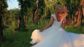 Il bello funzionamento biondo della sposa nella foresta verde si è acceso dai raggi di sole Tramonto meraviglioso alla campagna V archivi video