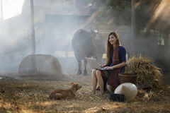 Il bello funzionamento della donna della Tailandia è felice, la donna della Tailandia, Tailandia, la cultura della Tailandia, agr Immagini Stock