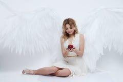 Il bello giovane modello con il grande angelo traversa la seduta volando nello studio Fotografia Stock Libera da Diritti