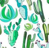Il bello insieme di erbe floreale tropicale messicano adorabile astratto sveglio luminoso di verde dell'estate di una pittura del Immagini Stock Libere da Diritti