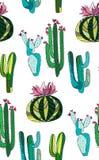 Il bello insieme di erbe floreale tropicale messicano adorabile astratto sveglio luminoso di verde dell'estate di una pittura del Fotografie Stock