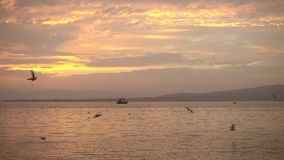 Il bello lago e la barca bianca galleggia via nella distanza archivi video
