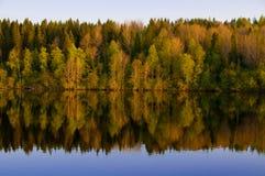 Il bello legno della sorgente è riflesso nel fiume Fotografie Stock