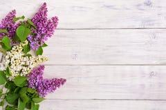 Il bello lillà su un fondo di legno Fotografia Stock Libera da Diritti