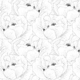 Il bello monocromio, fondo senza cuciture in bianco e nero con i fiori pianta il paeonia arborea (peonia dell'albero) Immagine Stock Libera da Diritti