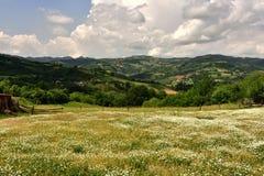 Il bello paesaggio del villaggio di Jarmenovci, Serbia fotografie stock libere da diritti