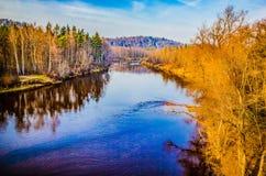 Il bello paesaggio della foresta di autunno con gli alberi di betulla, abeti e pini, ha riflesso in acqua blu calma del letto di  immagine stock libera da diritti