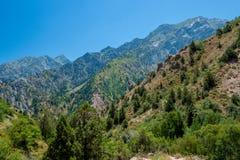 Il bello paesaggio della montagna uzbekistan Fotografia Stock Libera da Diritti