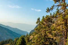 Il bello paesaggio della montagna uzbekistan Immagini Stock