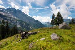 Il bello paesaggio delle montagne nelle alpi svizzere, Europa Fotografia Stock Libera da Diritti