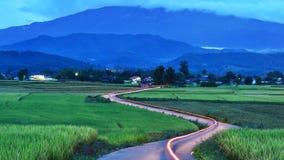 Il bello paesaggio di riso il bello paesaggio delle risaie Fotografia Stock Libera da Diritti